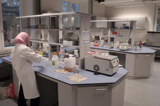 Arbeiten im Forschungslabor