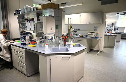 The Teaching Lab